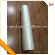 0.1mm Matte Plastic inkjet printing PET Film Roll or Sheet for Inkjet